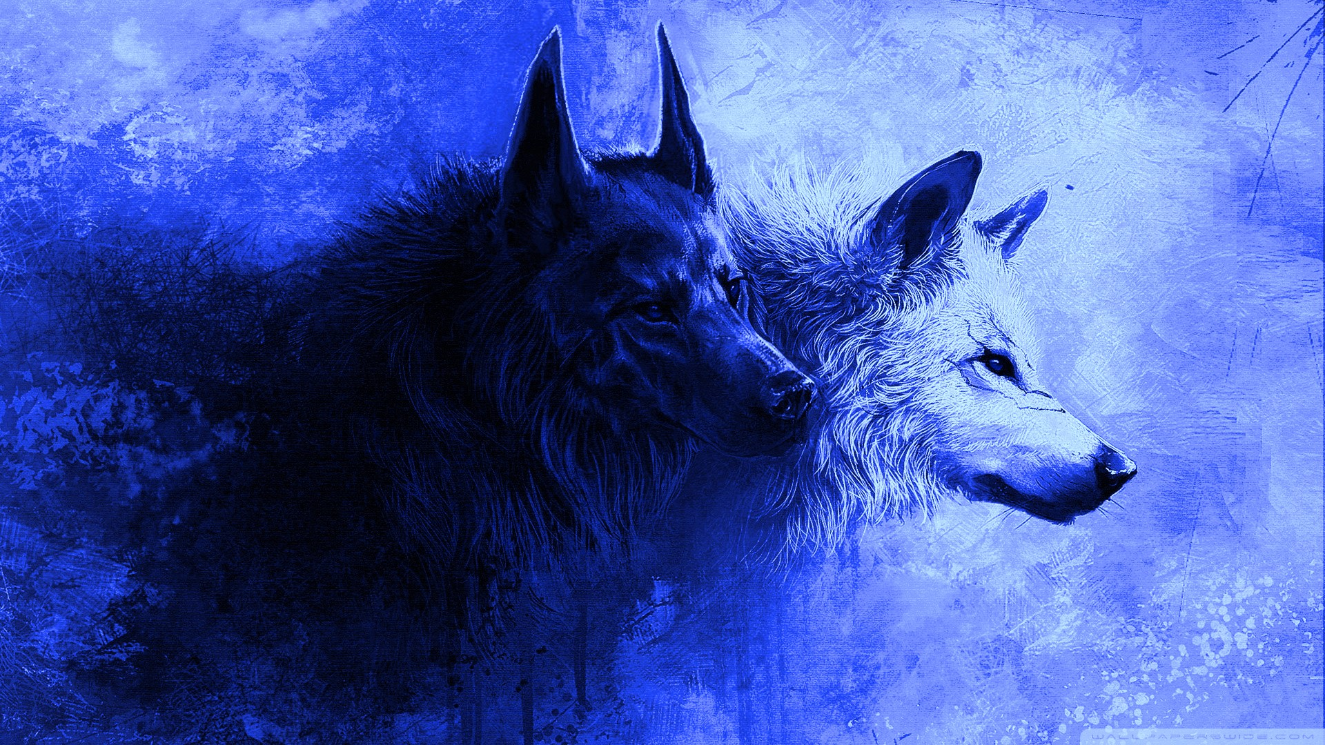 Best HD Cool Wolf Wallpaper With high-resolution 1920X1080 pixel. You can use and set as background for your Mac Desktop Background, Windows Screensavers, iPhone Wallpapers, Tablet or Android Lock screen and another Smartphone