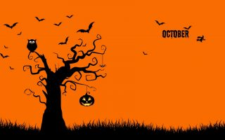 Best HD October Wallpaper With high-resolution 1920X1080 pixel. You can use and set as background for your Mac Desktop Background, Windows Screensavers, iPhone Wallpapers, Tablet or Android Lock screen and another Smartphone